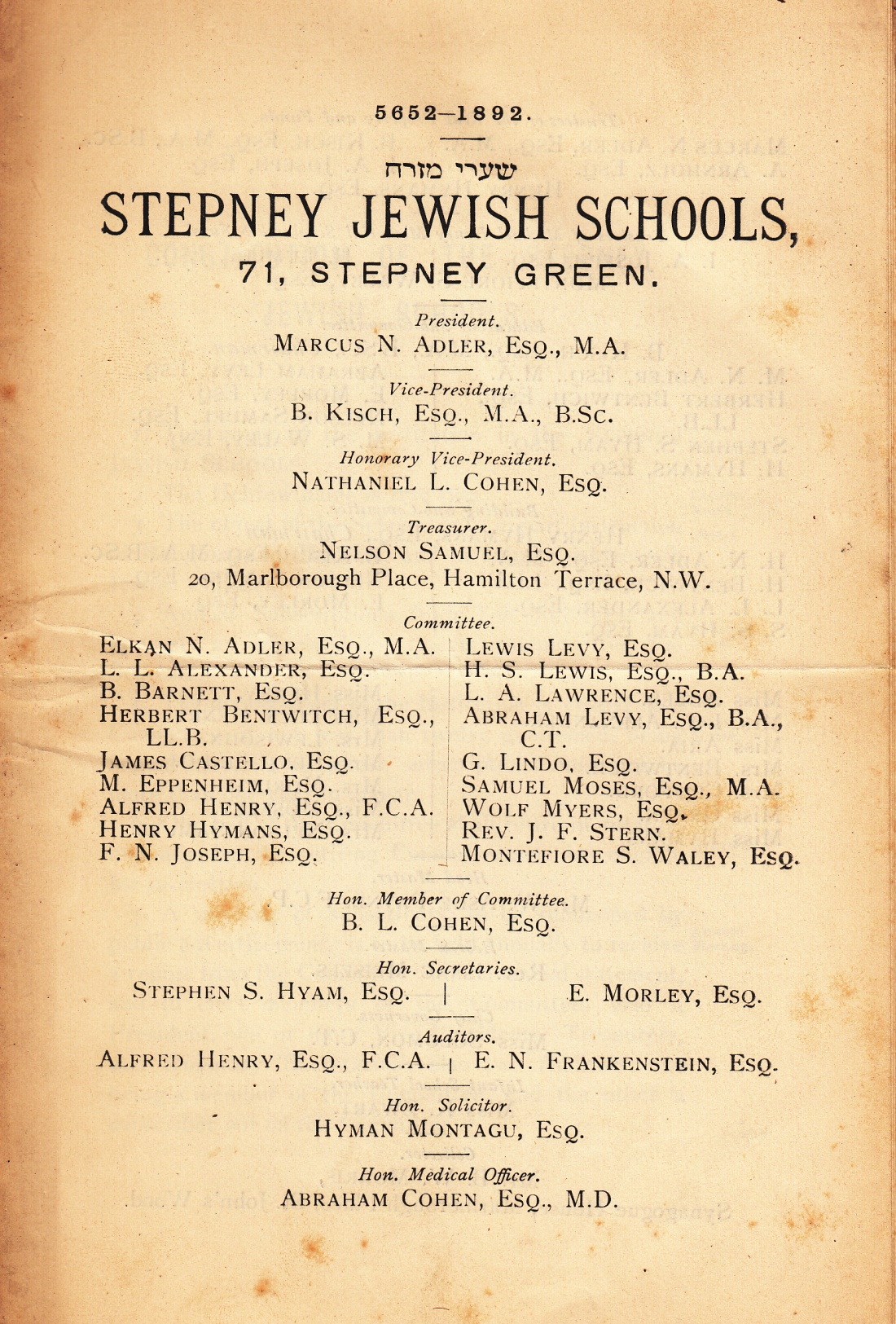 stepney 1