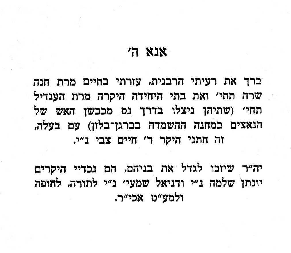 8d Meir_0011